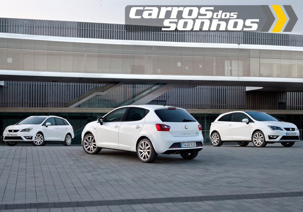 Seat Ibiza 2013
